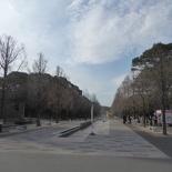 honnoi park 33