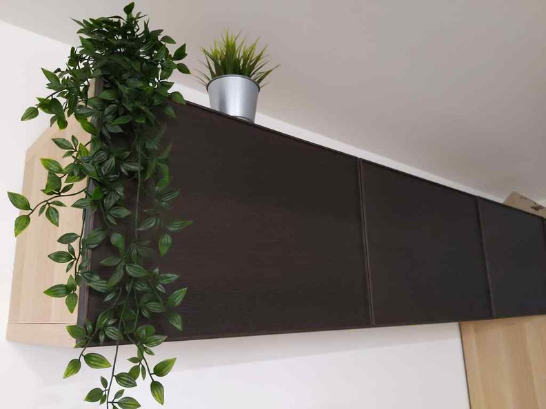 Sweet clean look of BESTA cabinets and doors held by hidden vertical hinges. With some FEJKA greenery
