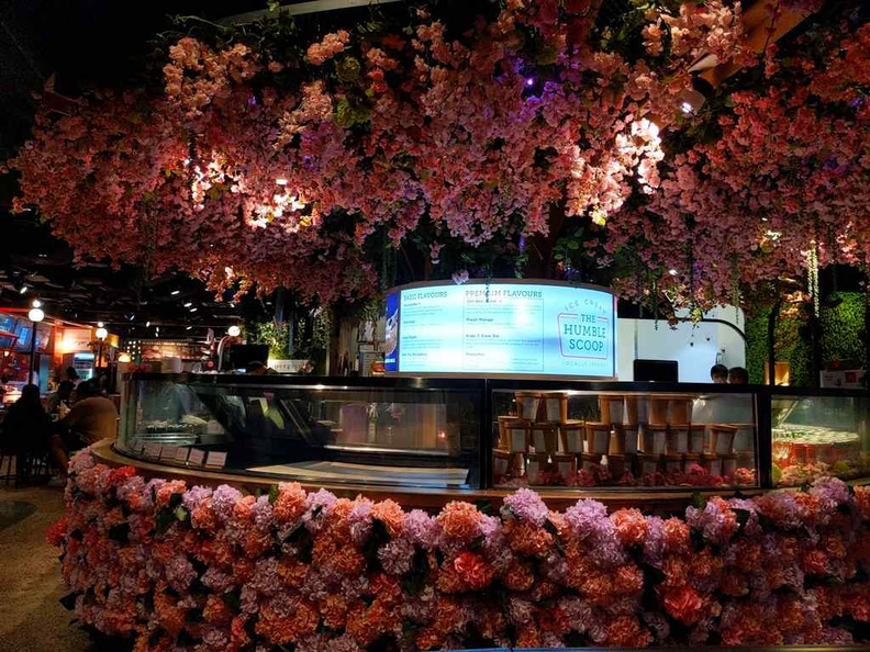 Picnic urban park central Sakura like cherry blossom tree is a pretty neat statement