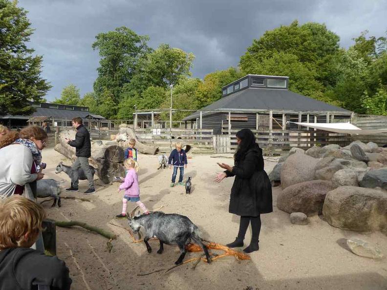 Copenhagen Denmark Zoo guest to animal interaction areas