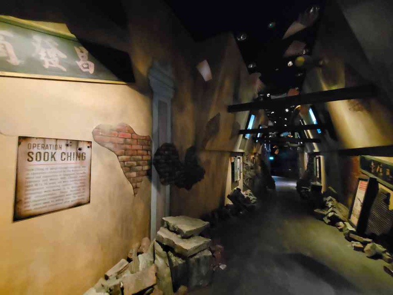 Operation Sook Ching and surviving the Japanese occupation
