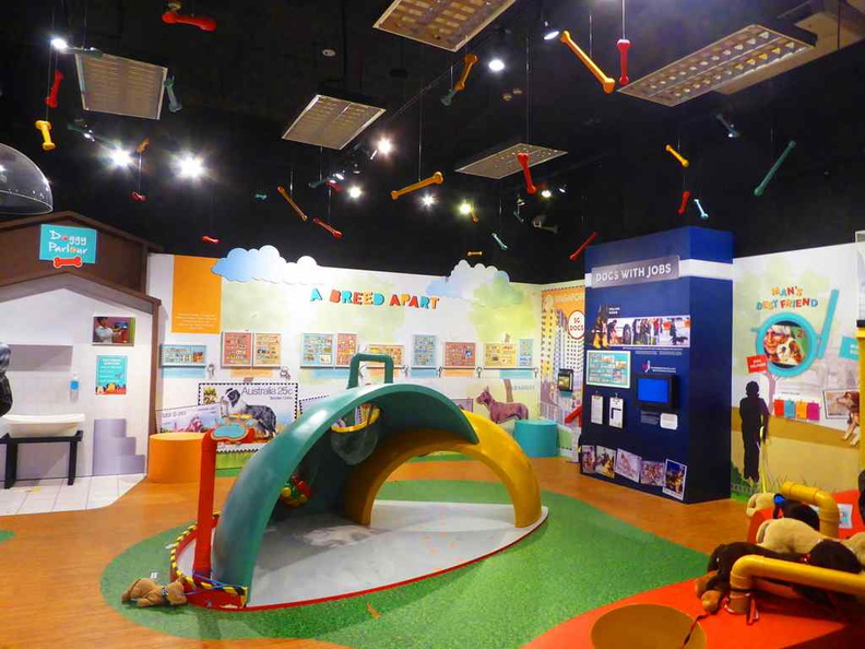General gallery and play areas