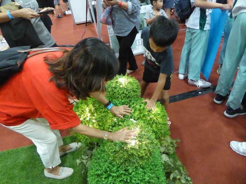 Interactive play garden
