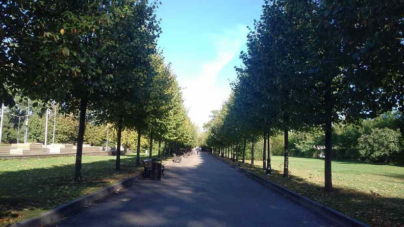 The long stretches in the park nicely lined with manicured trees and lawns