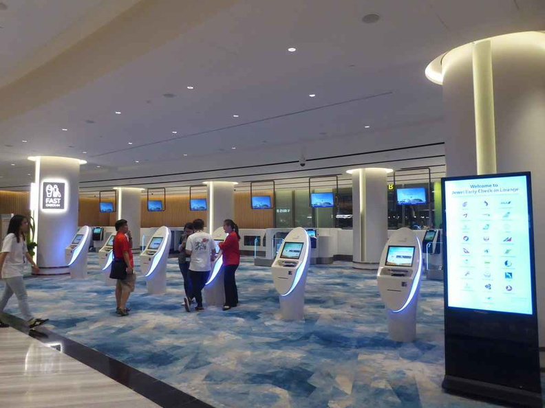 Changi group flight self check-in and baggage deposit areas on the ground floor