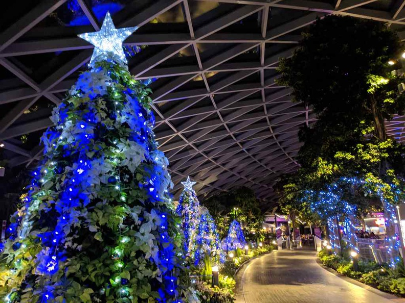 The petal garden has a livery of decorated and lit Xmas trees, topped with shiny stars