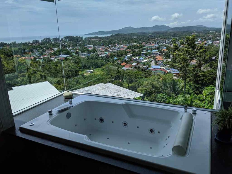 Jacuzzi in the master bedroom with a view