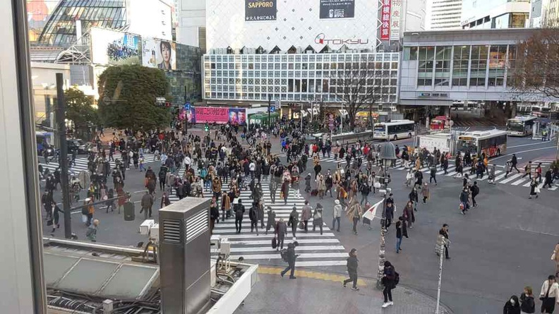 Shibuya iconic scramble crossing from Tustaya Starbucks