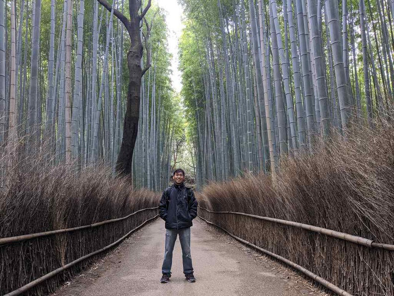 At the Path of Bamboo in Arashiyama